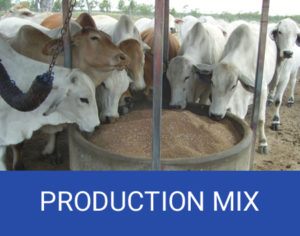 cattle production mixes